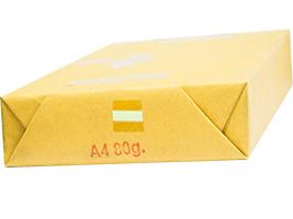 PP015 กระดาษสี 80g SSP สีเหลือง,สีเขียว,สีฟ้า,สีชมพู (500แผ่น/รีม)
